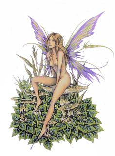 Amy Brown Faery and Pixies