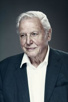 Sir David Attenborough by Ian Derry for The Radio Times