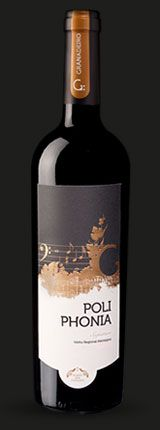 Best Red Wine in the World is...Portuguese!! - http://www.thirsty-cat.com/