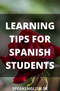 Learn Spanish Online, How To Speak Spanish, Virtual Class, Study Tips, Learning Spanish, Improve Yourself, Students, Language, English