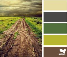 love the mix of gray and green and brown - old trends and new meshing.
