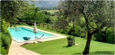 Agriturismo I mille Ulivi (Montefalco, Umbria): we stayed here for a week, amazing food en the wine was delicious too!