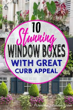 These Charleston window boxes use beautiful shade and sun plants to add great curb appeal to the front yard garden. Get inspiration from their window box ideas to design gorgeous flower box plant combinations for your own home. Window Box Plants, Window Box Flowers, Shade Flowers, Shade Plants, Flower Boxes, Flower Ideas, Low Maintenance Landscaping, Low Maintenance Garden, Gardening For Beginners