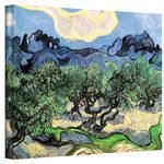 'Olive Trees' by Vincent Van Gogh Painting Print on Wrapped Canvas