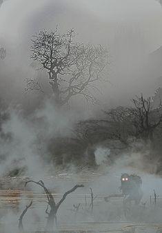 Karty pogody  - Gęsta mgła