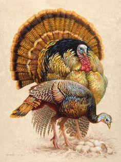Ezra Tucker, Franklin's Choice, acrylic, 40 x - Southwest Art Magazine Turkey Drawing, Turkey Painting, Turkey Art, Wild Turkey, Thanksgiving Pictures, Vintage Thanksgiving, Bird Drawings, Animal Drawings, Foto Transfer
