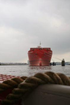MARITIME CIRCLE LINE - Hafenrundfahrt