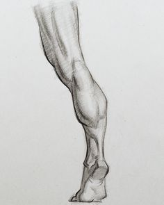 Drawing the Calves by Stan ProkopenkoHeres one of the upcoming assignment drawings for the calf muscles. I've also included the anatomy lesson I made for the calves. drawing anatomy Drawing the Calves, Stan Prokopenko Drawing Legs, Body Drawing, Drawing Poses, Life Drawing, Figure Drawing, Drawing Muscles, Feet Drawing, How To Draw Muscles, Drawing Lessons