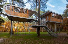 Treehouse   iGNANT.de