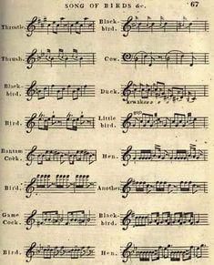 Intermediate piano arrangement palladio karl jenkins piano sheet 2733212716215368312709125201072729946687868ng 406502 fandeluxe Gallery