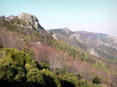 Massif du Tanargue: Parc Naturel Régional des Monts d'Ardèche - Montagne ardéchoise : vue depuis le col de Meyrand - France-Voyage.com