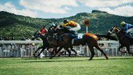 How to Bet on Horse Races