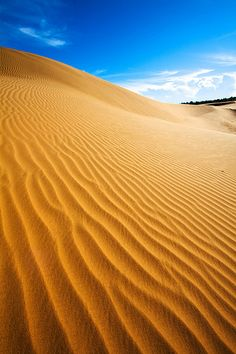 'A Sea of Sand', Vietnam, Mui Ne, Crazy carpeted down these incredible Sand Dunes...keep your mouth closed!