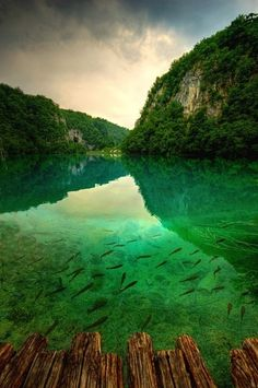 Plitvice Lakes National Park, Croatia Green waters and ribbons of waterfalls in dense vegetation.
