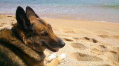 vilma en la playa