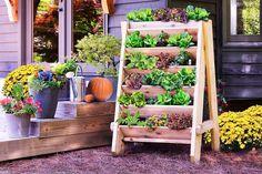 vertical-lettuce-planter