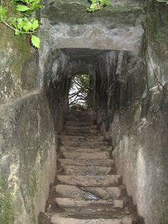 The Wishing Stairs on the grounds of Blarney Castle, County Cork, Ireland. Wishing steps
