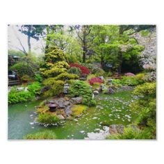 Shop San Francisco Japanese Tea Garden Postcard created by EverydayLifeSF. Backyard Water Feature, Ponds Backyard, Backyard Ideas, Koi Ponds, Pond Landscaping, Landscaping With Rocks, Japanese Garden Design, Japanese Koi, Japanese Gardens