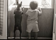baby playing with dog photography