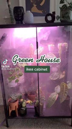 Indoor Greenhouse, Indoor Garden, Garden Plants, Indoor Plants, House Plants Decor, Plant Decor, Deco Studio, Household Plants, Decoration Plante