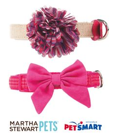 Perfectly #pink dog collars by #marthastewartpets.
