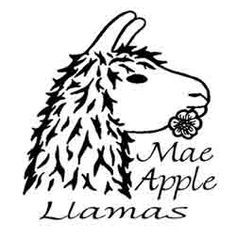 Mad City Llamas Llama Arts, Llamas, Art Logo, Mad, Logos, City, Logo, City Drawing, Cities