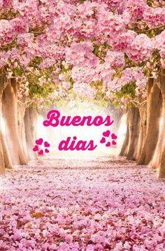 sayings in spanish Good Morning In Spanish, Good Morning Tuesday, Good Morning Msg, Good Morning Images, Gd Morning, Morning Pics, Happy Morning Quotes, Morning Greetings Quotes, Morning Messages