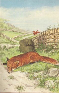 The little red hen fills the bag with heavy stones - The Sly Fox & The Little Red Hen ..