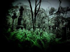 Warsaw Old Cemetery''Old Powązki''
