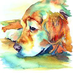 Golden Retriever..profile. www.christystudios.com