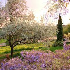 Hier kann man sich gar nicht satt sehen - Bio Urlaub in der Toskana
