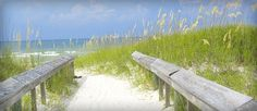 Gulf Shores, AL  White sand beaches and gorgeous places to stay and great places to eat!