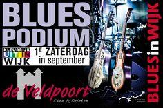 Bluespodium Wijkse Uitmarkt 2014