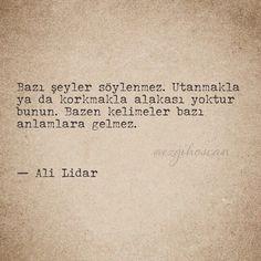 Bazı şeyler söylenmez. Utanmakla ya da korkmakla alakası yoktur bunun. Bazen 'kelimeler bazı anlamlara gelmez.   - Ali Lidar