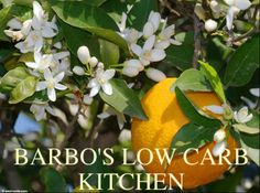 BARBO'S LOW CARB KITCHEN