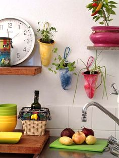 Coadores de pano viram vasos para plantas