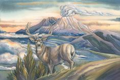 """""""From the Ashes of the Past... A New Day"""" par Jody Bergsma"""