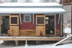 Love the mini goat barn and chicken coop next to it