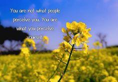 #AtoZChallenge: P is For Perception