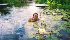 SWIMMING POOL WITH LILY PADS ..(where are the frogs?)