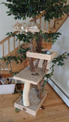 Sycamore Cat Pet Tree House Etsy You are in the right place about locos vatos Here we offer you the most beautiful pictures about the locos somos you are looking for. When you examine the Sycamore Cat Pet Tree House Cat Playground, Playground Design, Diy Cat Tree, Cat Run, Indoor Pets, Curious Cat, Cat Supplies, Cat Furniture, Diy Stuffed Animals