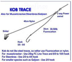Trace Kob Related Keywords & Suggestions - Trace Kob Long Tail Keywords