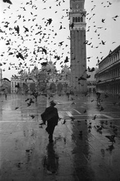 Dmitri Kessel - Pigeons consuming space in Piazza San Marco on a rainy day w. St. Mark's Basilica in the bkgd., 1952. Time Life Pictures/Getty Images. °
