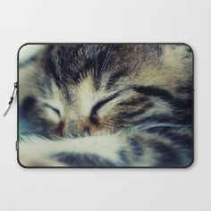 Found on Society6