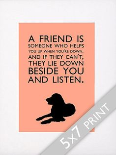 Dog Quotes Golden Retriever Print A friend is someone who helps you up when your down... via Etsy
