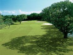 Seabrook Island Resort -Ocean Winds, Johns Island, South Carolina, 29455 - Golf Course Photo