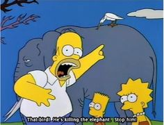 """Remember that one time you tried """"getting in touch with nature""""? This is what you looked like: 