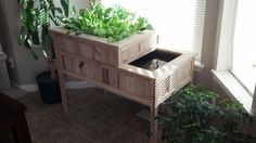 Indoor Aquaponic / Vermiponic Herb & Vegetable Garden...New pricing and shipping options now available!