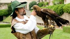 Falconry show - Rosenburg Renaissance Castle  - Don't miss it while attending the World Congress of #musictherapy 2014 in Austria #WCMT2014  http://wcmt2014.wordpress.com