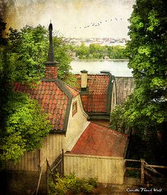 Rooftops Sodermalm, Stockholm | by Milla's Place
